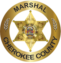 marshal-badge